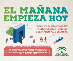 Escolarización 2019-2020 2º Ciclo de Infantil a Bachillerato