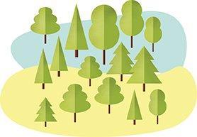 Línea de Educación Ambiental y Conservación de la Biodiversidad