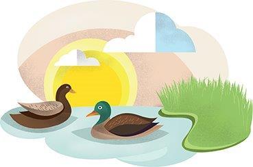 Imagen identificativa del Proyecto Doñana