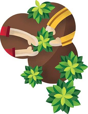 Imagen identificativa del Proyecto Ecohuertos