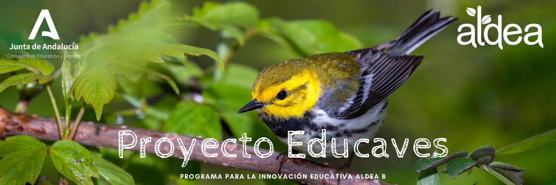 Proyecto Educaves