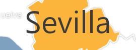 Delegación de Sevilla