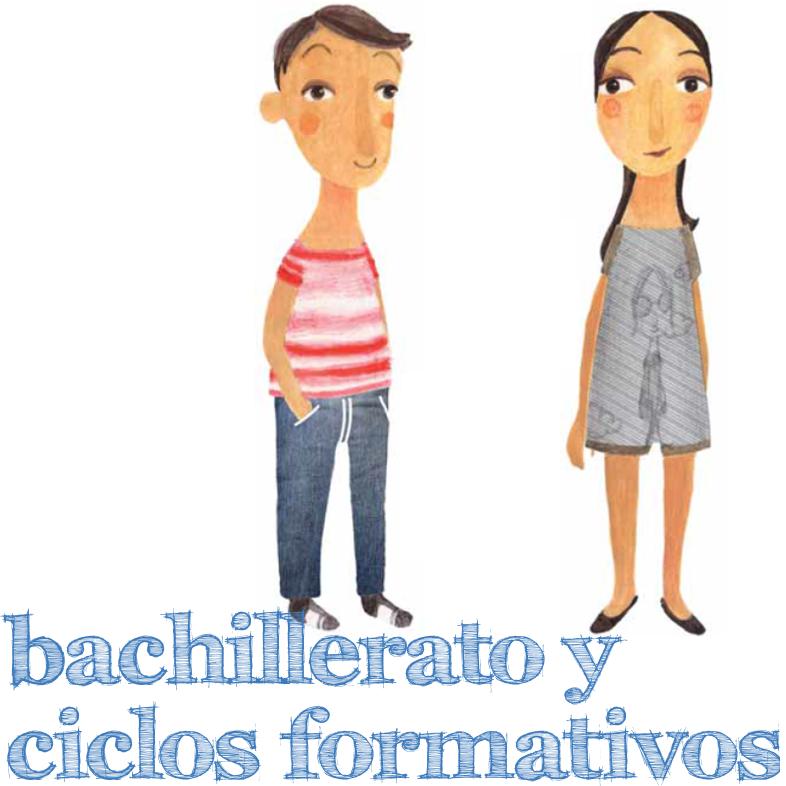 Bachillerato y Ciclos Formativos