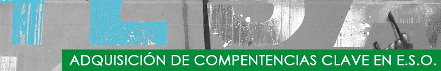 Adquisición Competencias Clave en ESO