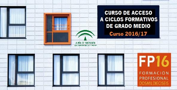 Escolarización de los cursos de acceso a ciclos formativos de grado medio (Curso 2016/17)