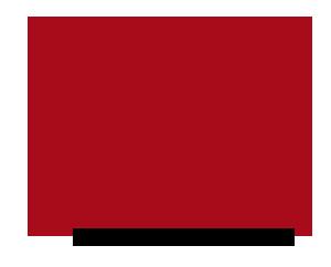SpainSkills_2017 (SpainSkills_2017.png)