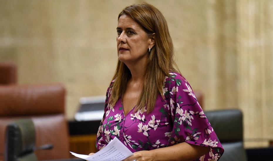 La consejera en el Parlamento
