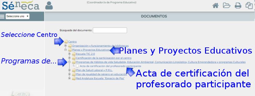 certificación (certificado_2014_2015_02.png)