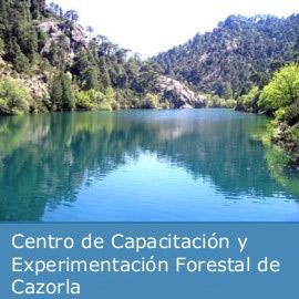 Cursos de formacion ambiental de Cazorla
