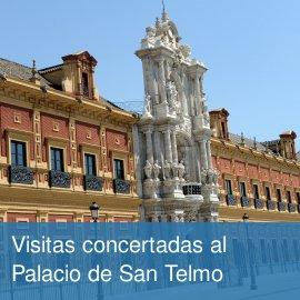 San Telmo - Visitas concertadas