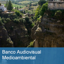 Banco Audiovisual