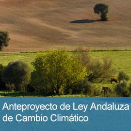 Participa en el Anteproyecto de Ley Andaluza de Cambio Climático