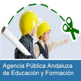 Agencia Pública Andaluza de Educación y Formación