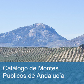 Catálogo de Montes Públicos de Andalucía
