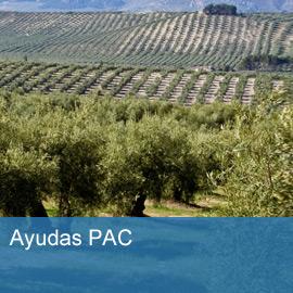 Ayuda de la Política Agrícola Común (PAC)