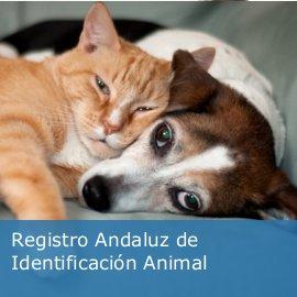 Registro Andaluz de Identificación Animal