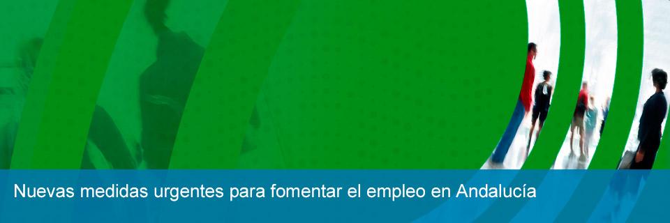 Decreto ley 2/2015 Fomento del empleo en Andalucía