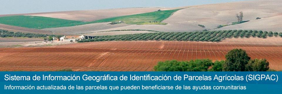 Sistema de Información Geográfica de Identificación de Parcelas Agrícolas (SIGPAC)