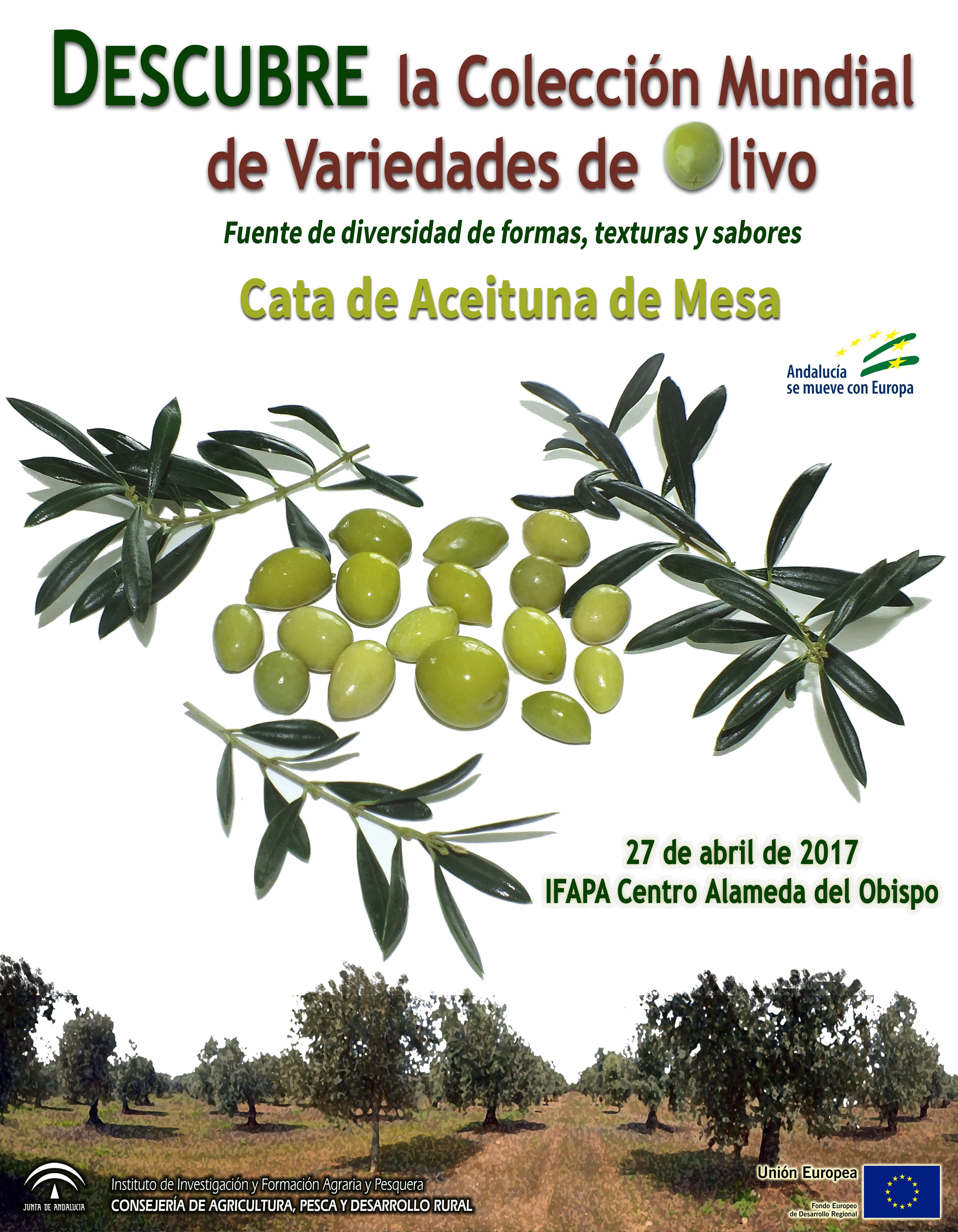 Jornada de Cata de Aceituna de Mesa de Variedades de la Colección Mundial de Variedades del Olivo