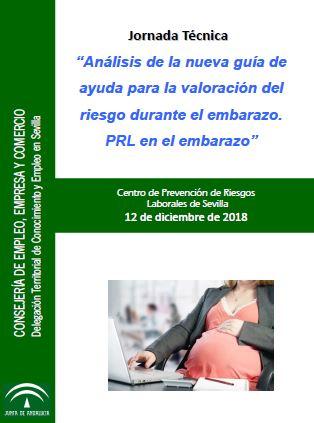 Jornada técnica 'Análisis de la nueva guía de ayuda para la valoración del riesgo durante el embarazo. PRL en el embarazo'