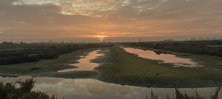 XIII Concurso Fotográfico del Día Mundial de los Humedales. Abierto plazo de inscripción hasta el 25 de enero
