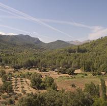 Andalucía cuenta con 4,4 millones de hectáreas de superficie forestal.