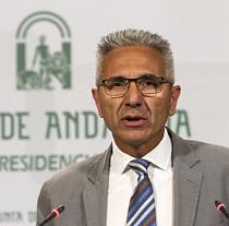 Miguel Ángel Vázquez, portavoz del Gobierno de la Junta, durante su comparecenci