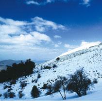 La Sierra de las Nieves será el tercer parque nacional andaluz