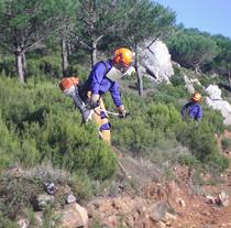Trabajos preventivos de limpieza del monte