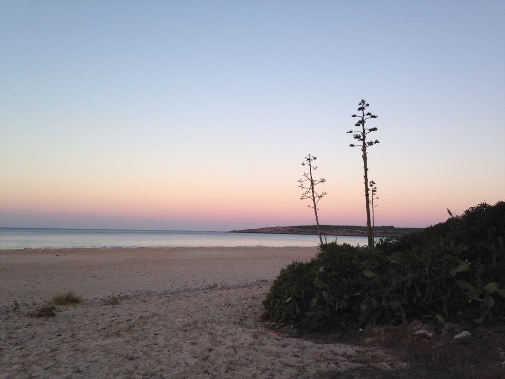 imagen atardecer playa Bolonia