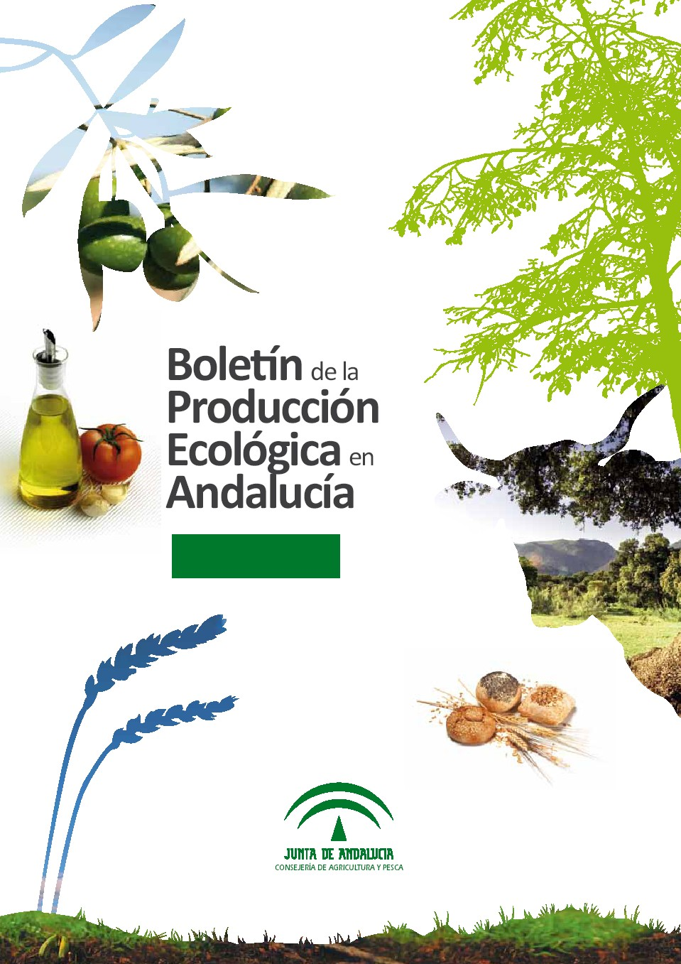 boletin_produccion_eco