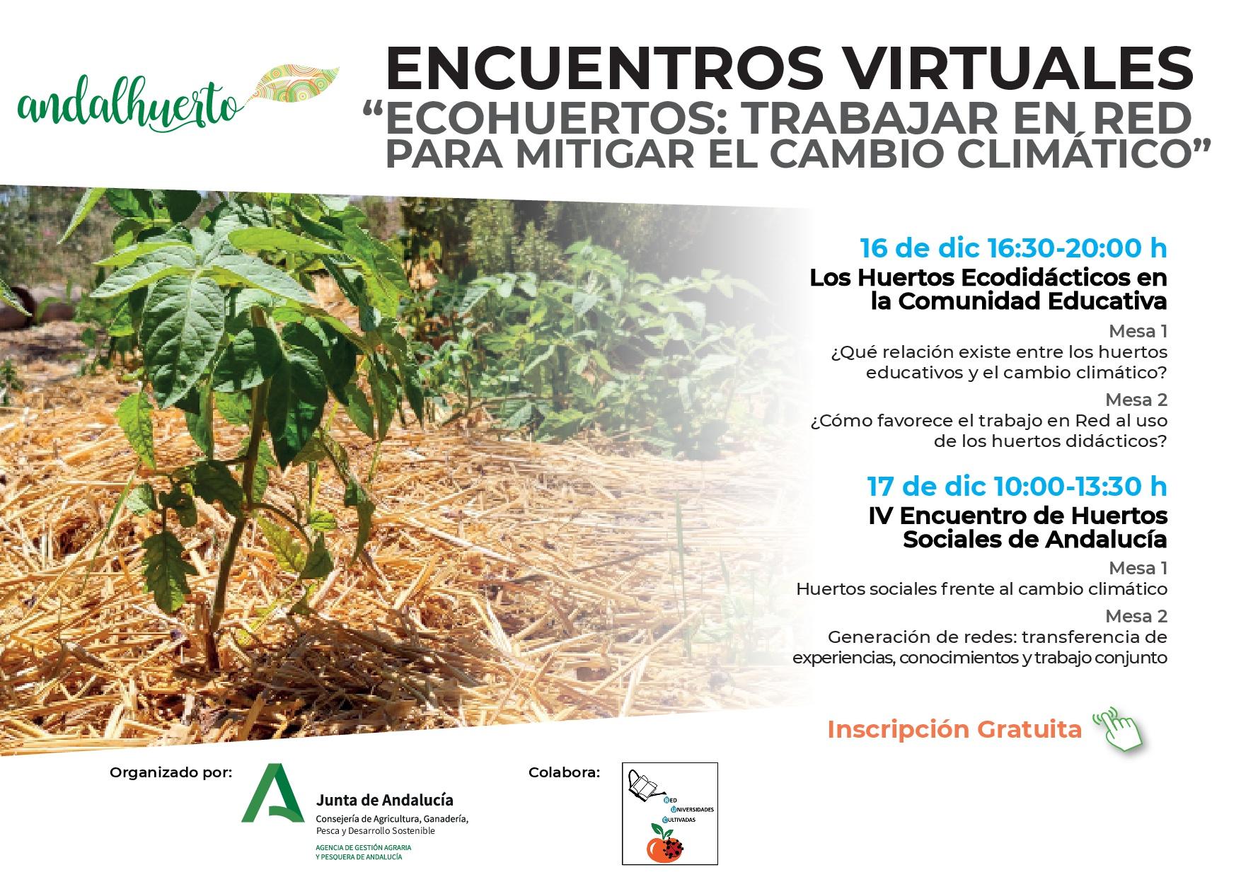 Cartel encuentros virtuales Ecodidácticos 2020