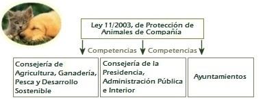 Competencias animales de compañía