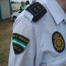 Cuerpos de seguridad