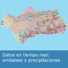 Datos en tiempo real: embalses y precipitaciones