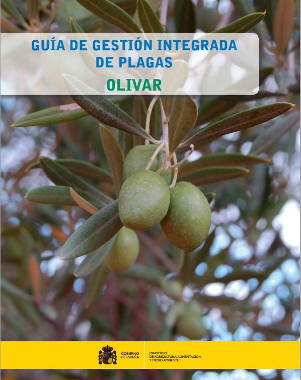 gip_olivar.jpg