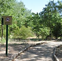 Imagen del Corredor Verde del Guadiamar.