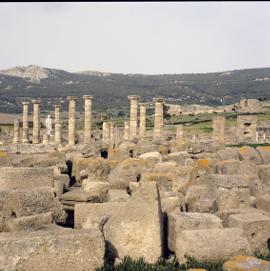 Conjunto Arqueológico de Baelo-Claudia