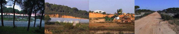 Mosaico fotografías de Doñana