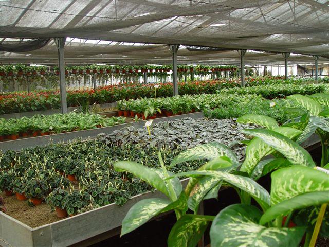 junta de andaluc a la consejer a de agricultura protege