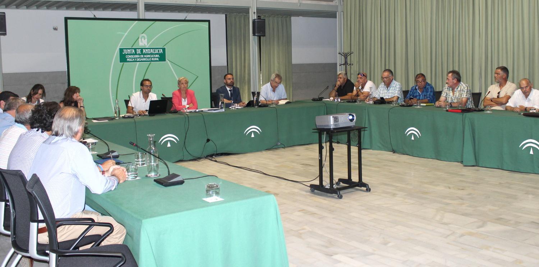 La Junta acepta la mayoría de las alegaciones del sector para regular la pesquería de la chirla en el Golfo de Cádiz
