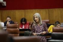 La consejera de Cultura y Patrimonio Histórico durante su intervención en el Parlamento