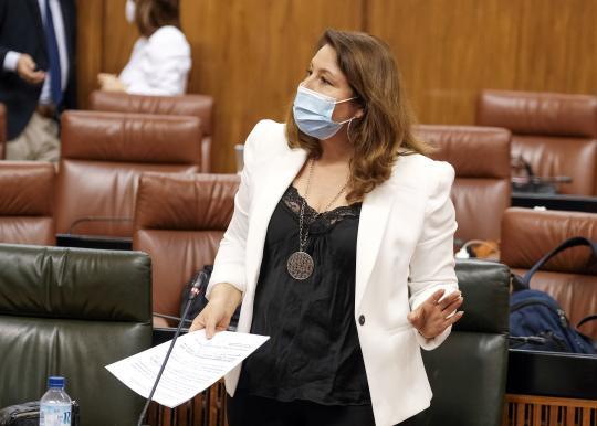 La consejera en su intervención parlamentaria