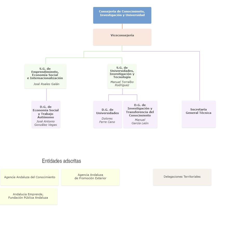Gráfico de Organigrama de la Consejería de Conocimiento, Investigación y Universidad