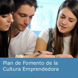 Plan de Fomento de la Cultura Emprendedora en el Sistema Educativo Público