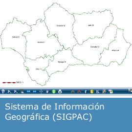 Sistema de Información Geográfica (SIGPAC)
