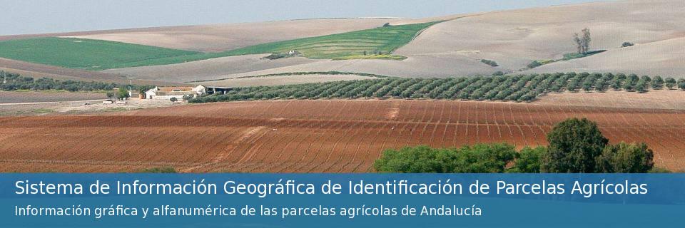 Sistema de Información Geográfica de Identificación de Parcelas Agrícolas