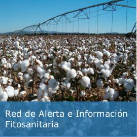 Red de alerta de información fitosanitaria