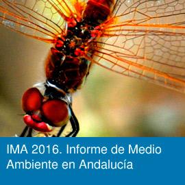 iMA/ Informe de Medio Ambiente de Andalucía
