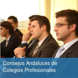 Consejos Andaluces de Colegios Profesionales